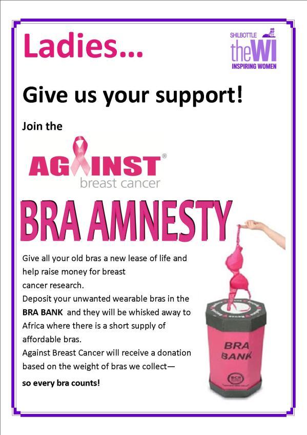 bra-amnesty-poster
